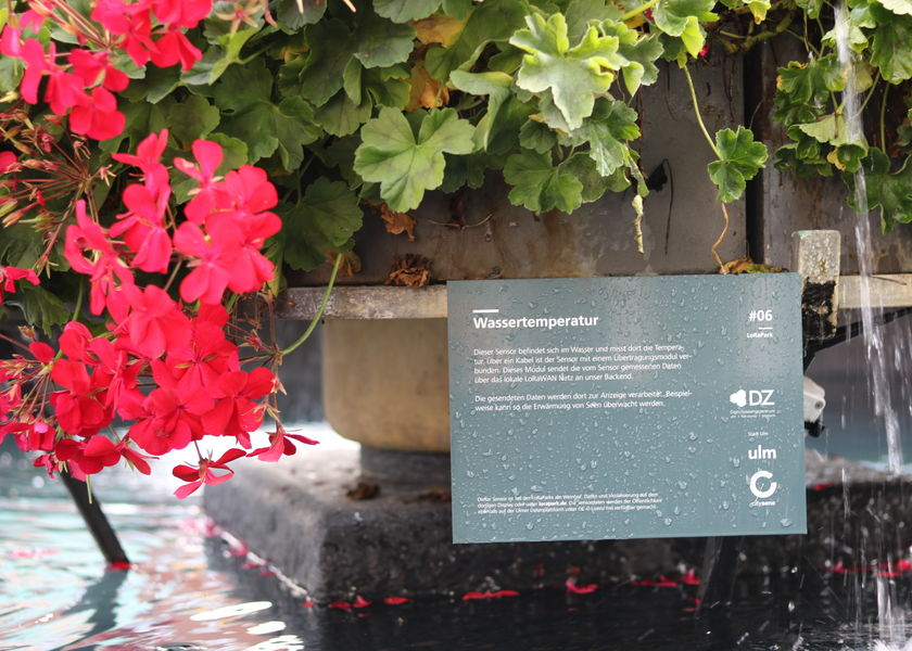Ulm lora sensor water temperature
